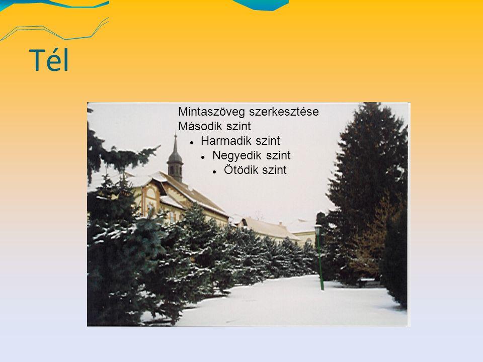 Tél Mintaszöveg szerkesztése Második szint Harmadik szint Negyedik szint Ötödik szint