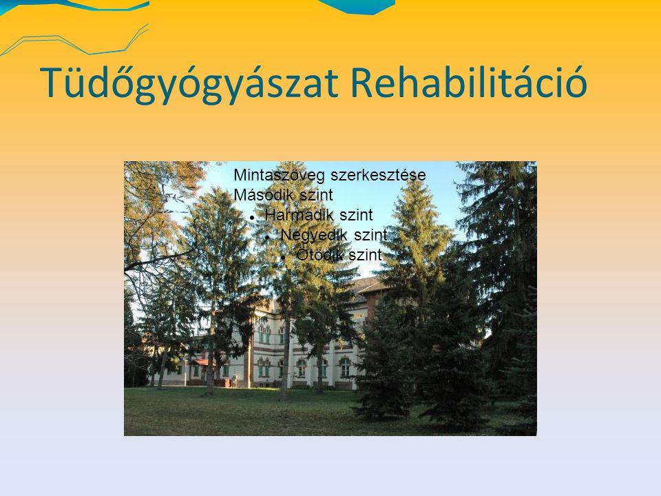 Tüdőgyógyászat Rehabilitáció Mintaszöveg szerkesztése Második szint Harmadik szint Negyedik szint Ötödik szint