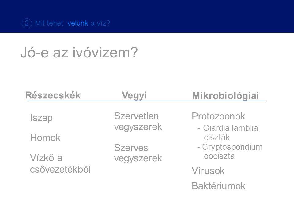 Vegyi Mikrobiológiai Szervetlen vegyszerek Szerves vegyszerek Protozoonok - Giardia lamblia ciszták - Cryptosporidium oociszta Vírusok Baktériumok Rés