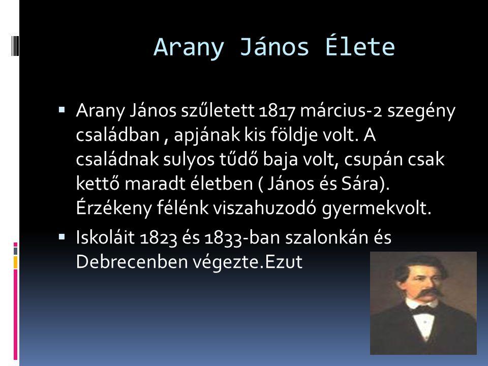 Arany János Élete  Arany János szűletett 1817 március-2 szegény családban, apjának kis földje volt. A családnak sulyos tűdő baja volt, csupán csak ke