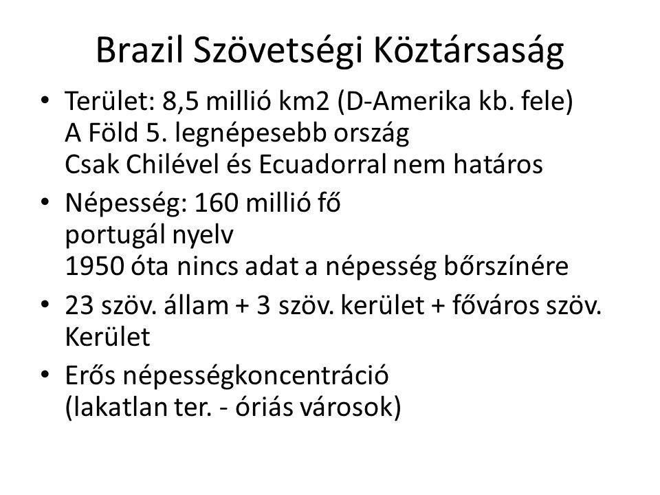 Brazil Szövetségi Köztársaság Terület: 8,5 millió km2 (D-Amerika kb. fele) A Föld 5. legnépesebb ország Csak Chilével és Ecuadorral nem határos Népess