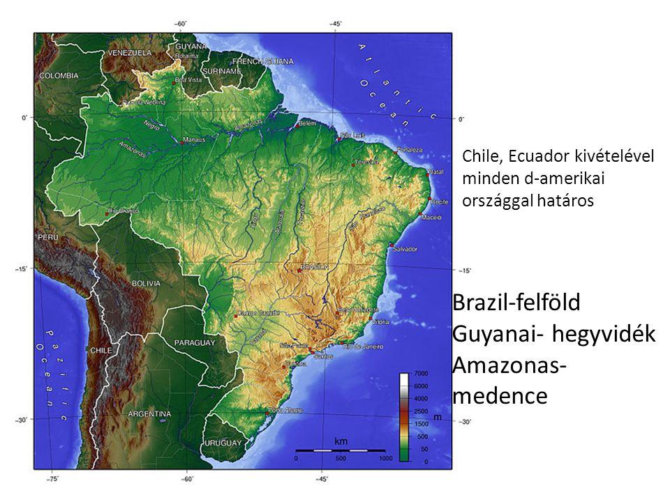 Chile, Ecuador kivételével minden d-amerikai országgal határos Brazil-felföld Guyanai- hegyvidék Amazonas- medence