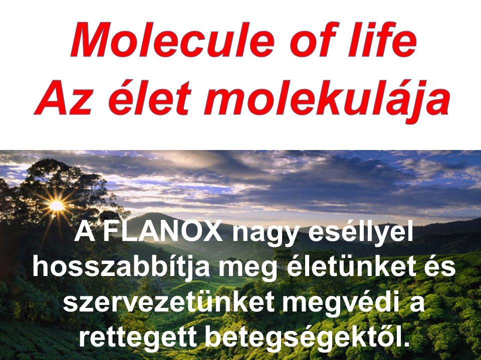 A FLANOX nagy eséllyel hosszabbítja meg életünket és szervezetünket megvédi a rettegett betegségektől.