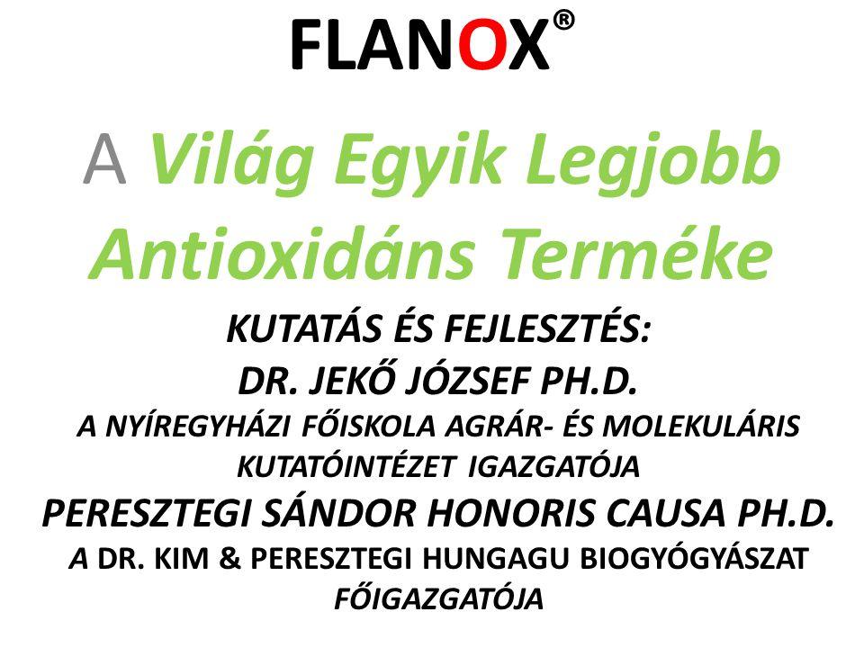 FLANOX The Big Blumm A nagy felvirágzás!