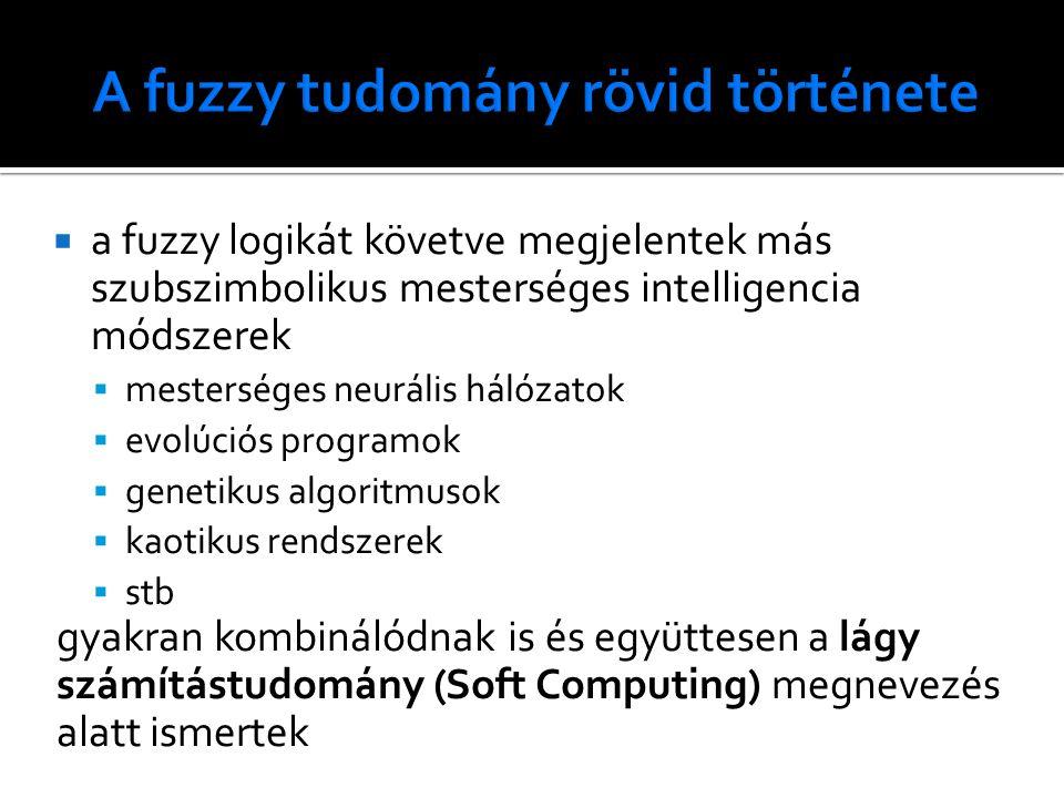  a fuzzy logikát követve megjelentek más szubszimbolikus mesterséges intelligencia módszerek  mesterséges neurális hálózatok  evolúciós programok  genetikus algoritmusok  kaotikus rendszerek  stb gyakran kombinálódnak is és együttesen a lágy számítástudomány (Soft Computing) megnevezés alatt ismertek