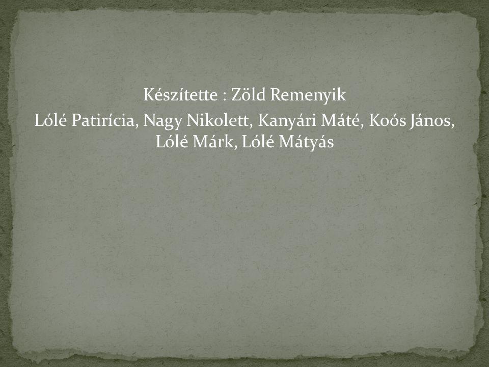 Készítette : Zöld Remenyik Lólé Patirícia, Nagy Nikolett, Kanyári Máté, Koós János, Lólé Márk, Lólé Mátyás