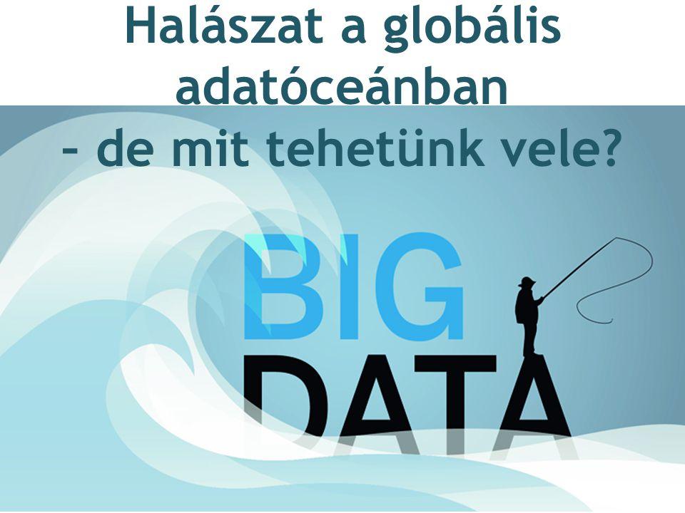 Halászat a globális adatóceánban – de mit tehetünk vele