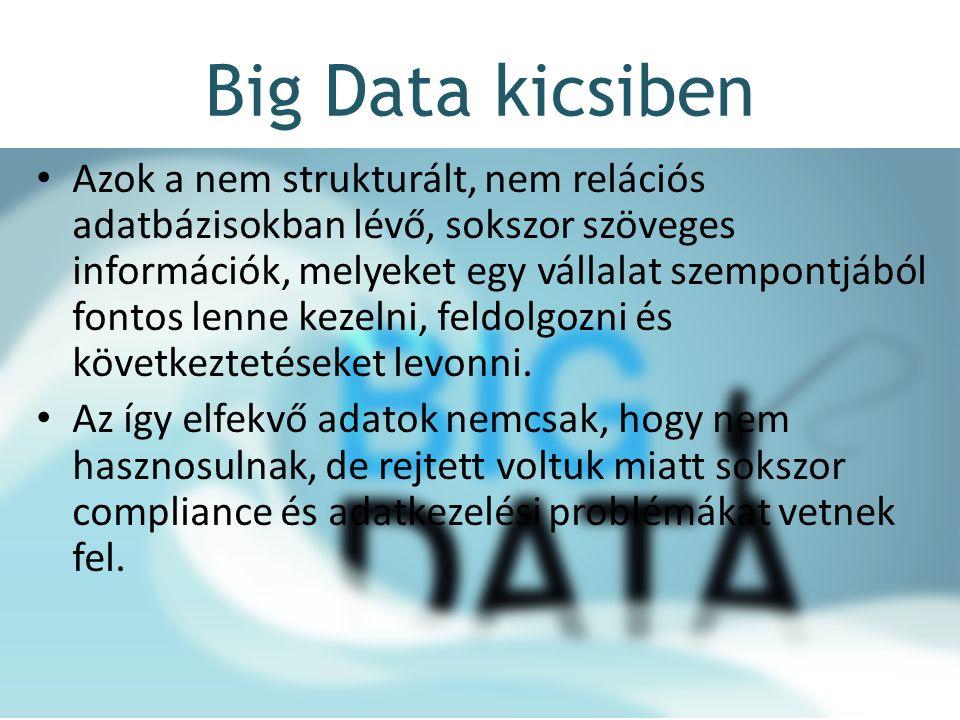 Big Data kicsiben Azok a nem strukturált, nem relációs adatbázisokban lévő, sokszor szöveges információk, melyeket egy vállalat szempontjából fontos lenne kezelni, feldolgozni és következtetéseket levonni.
