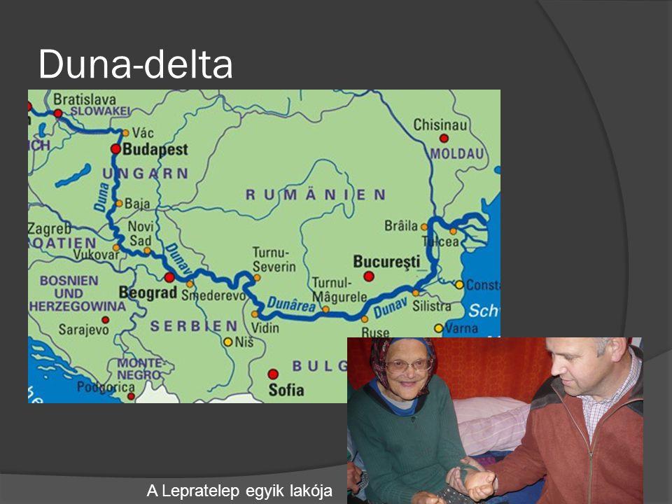 Duna-delta A Lepratelep egyik lakója