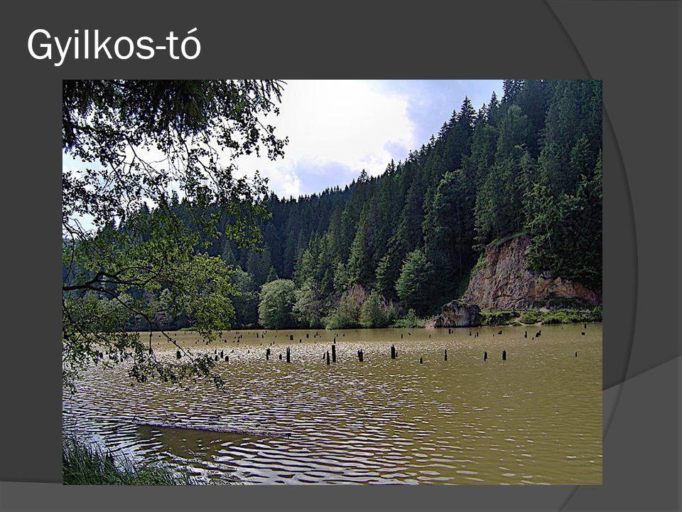 Gyilkos-tó