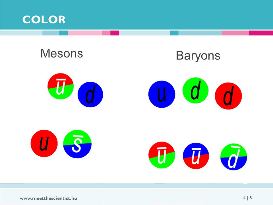 COLOR www.meetthescientist.hu 4 | 8 Mesons Baryons