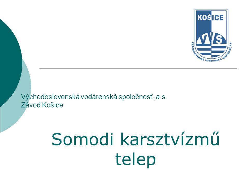 Východoslovenská vodárenská spoločnosť, a.s. Závod Košice Somodi karsztvízmű telep