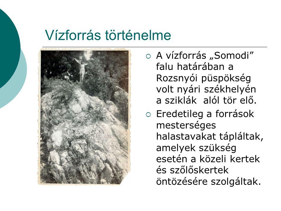 """Vízforrás történelme  A vízforrás """"Somodi falu határában a Rozsnyói püspökség volt nyári székhelyén a sziklák alól tör elő."""
