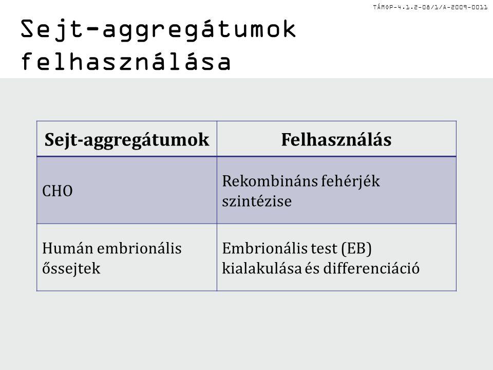 TÁMOP-4.1.2-08/1/A-2009-0011 Sejt-aggregátumok felhasználása Sejt-aggregátumokFelhasználás CHO Rekombináns fehérjék szintézise Humán embrionális őssej