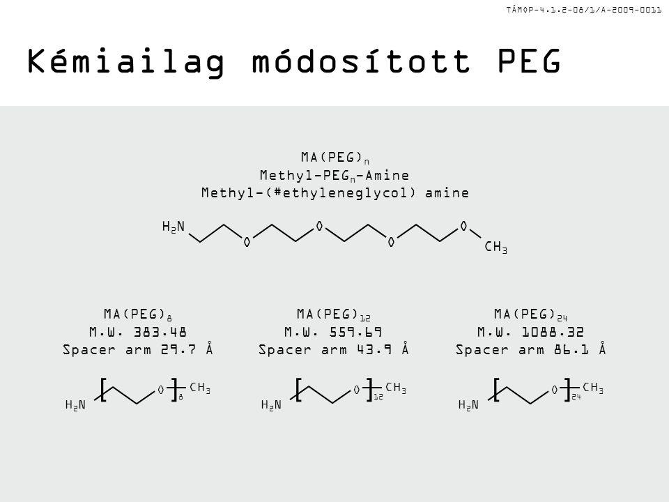 TÁMOP-4.1.2-08/1/A-2009-0011 Kémiailag módosított PEG MA(PEG) n Methyl-PEG n -Amine Methyl-(#ethyleneglycol) amine H2NH2N CH 3 O O O O MA(PEG) 8 M.W.
