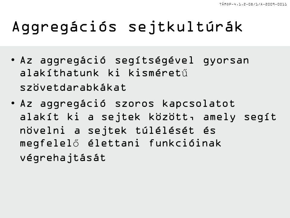 TÁMOP-4.1.2-08/1/A-2009-0011 II.Microgravitációs sejtkultúra – Függőcsepp II.