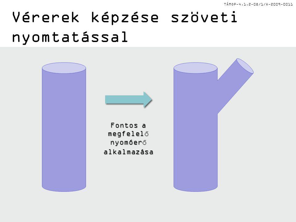 TÁMOP-4.1.2-08/1/A-2009-0011 Vérerek képzése szöveti nyomtatással Fontos a megfelelő nyomóerő alkalmazása