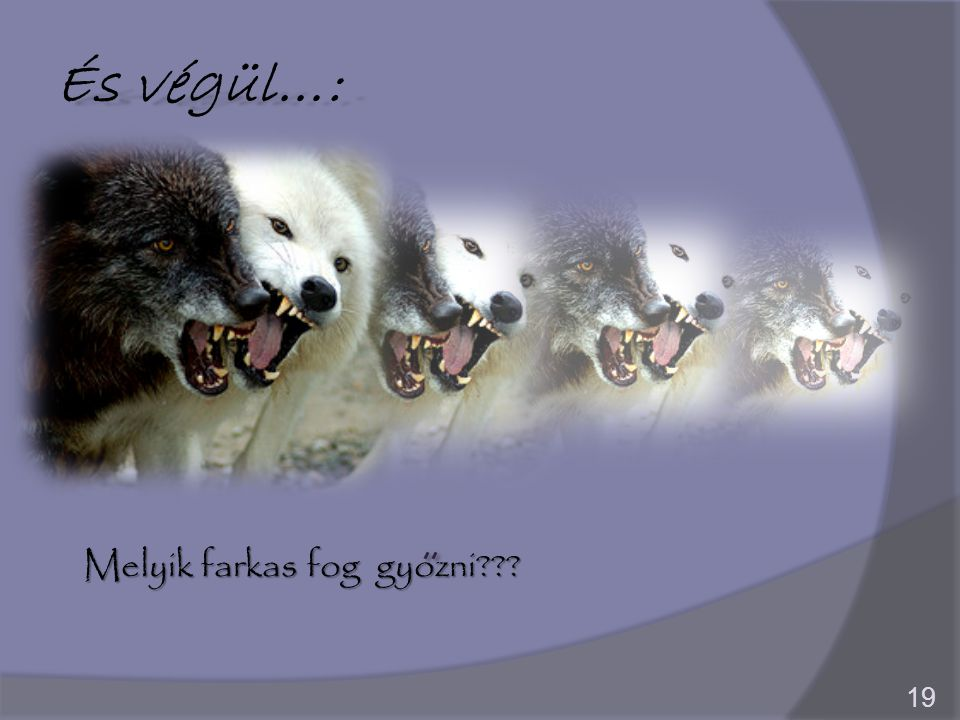 És végül…: 19 Melyik farkas fog gyozni???
