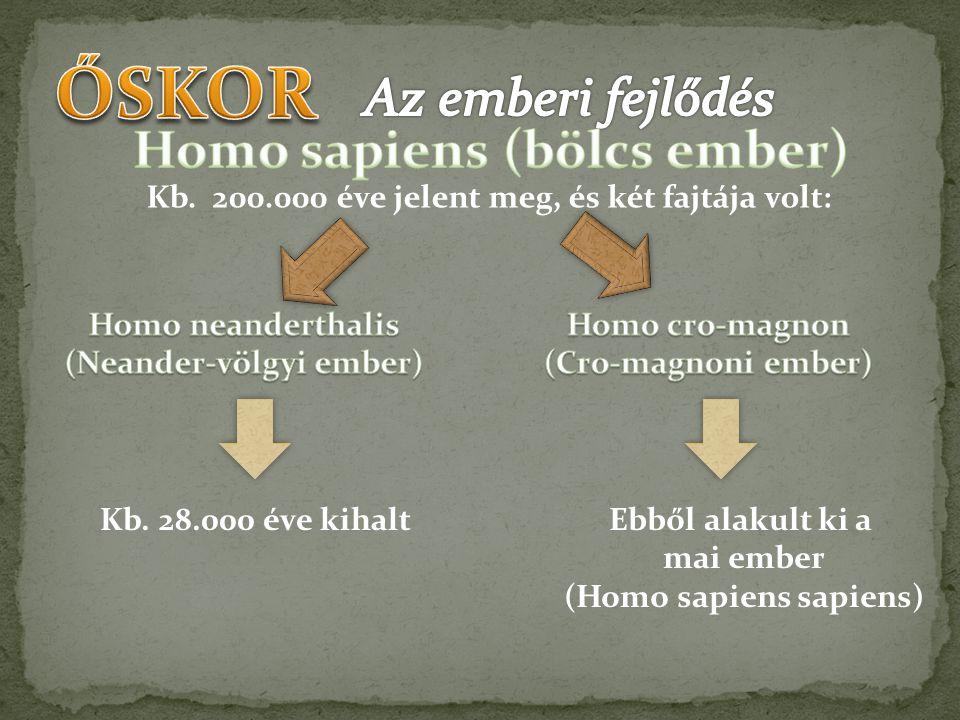 Kb. 200.000 éve jelent meg, és két fajtája volt: Kb. 28.000 éve kihaltEbből alakult ki a mai ember (Homo sapiens sapiens)