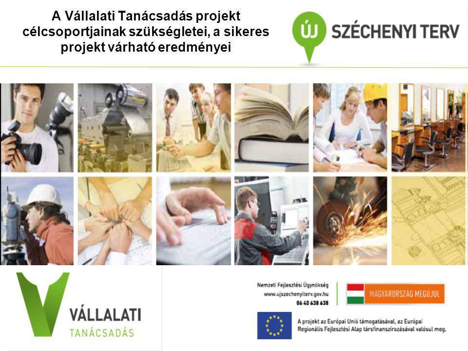 A Vállalati Tanácsadás projekt célcsoportjainak szükségletei, a sikeres projekt várható eredményei