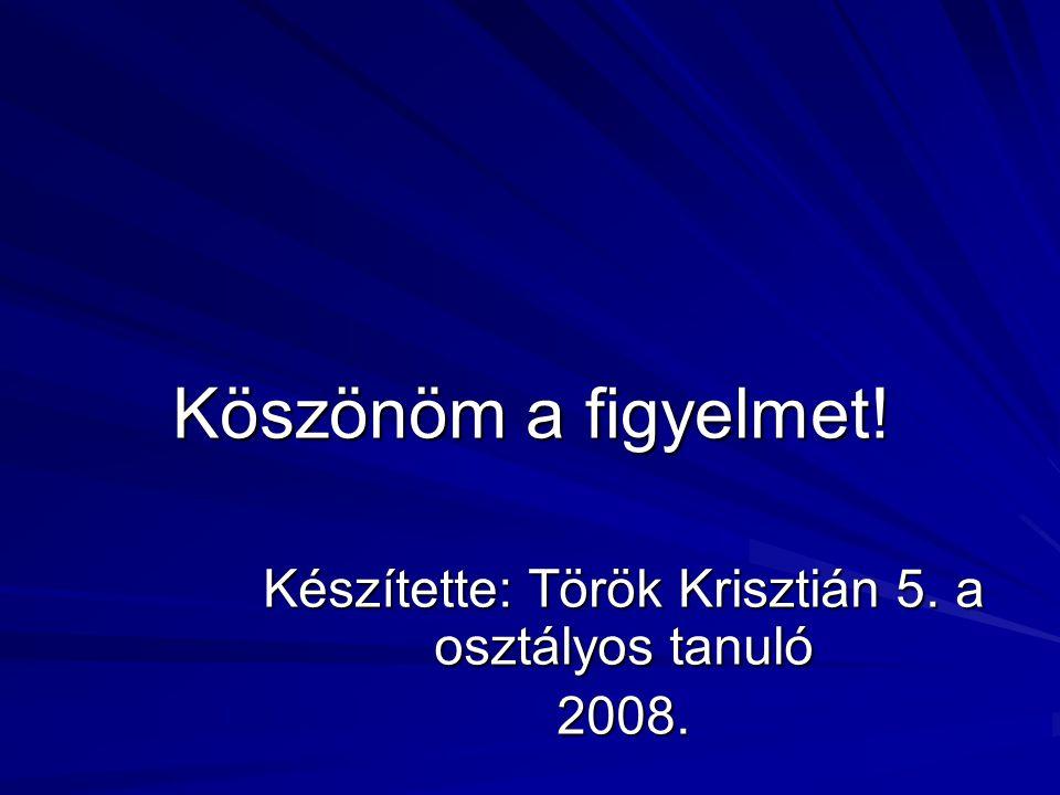 Köszönöm a figyelmet! Készítette: Török Krisztián 5. a osztályos tanuló 2008.