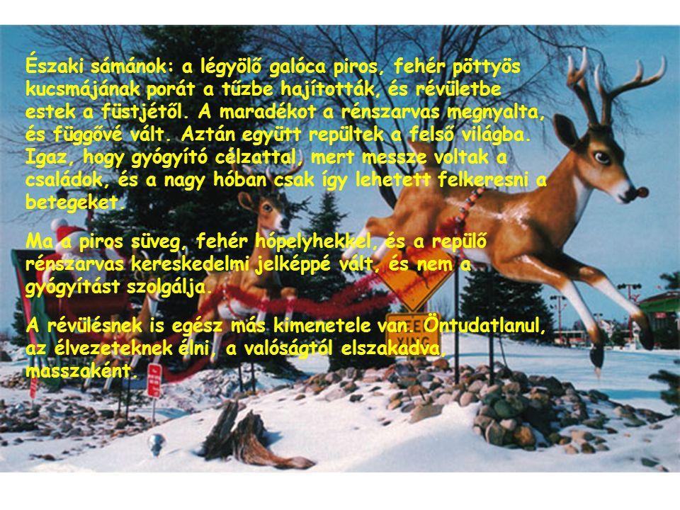 Északi sámánok: a légyölő galóca piros, fehér pöttyös kucsmájának porát a tűzbe hajították, és révületbe estek a füstjétől. A maradékot a rénszarvas m