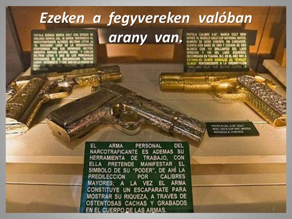 Egy kis fegyvergyűjtemény. 3