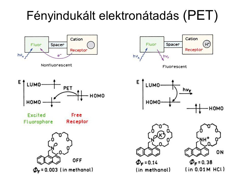 Fényindukált elektronátadás (PET)