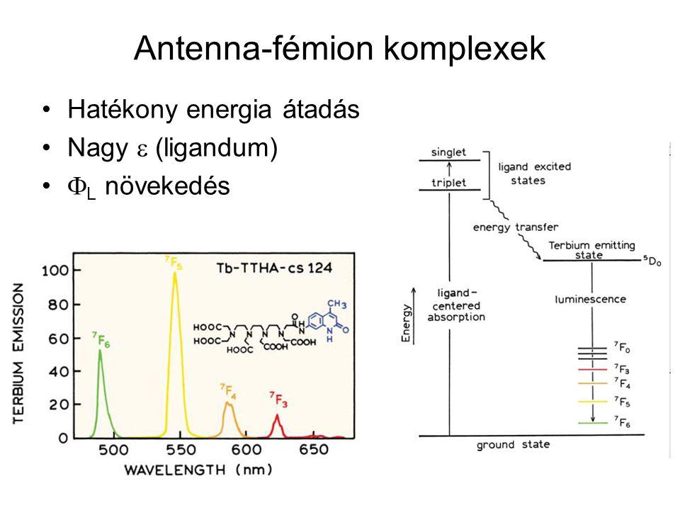 Antenna-fémion komplexek Hatékony energia átadás Nagy  (ligandum)  L növekedés