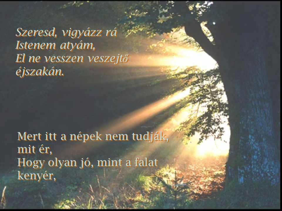 Szeresd, vigyázz rá Istenem atyám, El ne vesszen veszejt ő éjszakán.