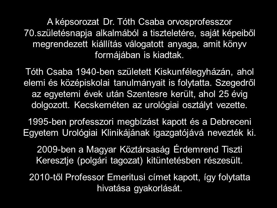 A képsorozat Dr. Tóth Csaba orvosprofesszor 70.születésnapja alkalmából a tiszteletére, saját képeiből megrendezett kiállítás válogatott anyaga, amit