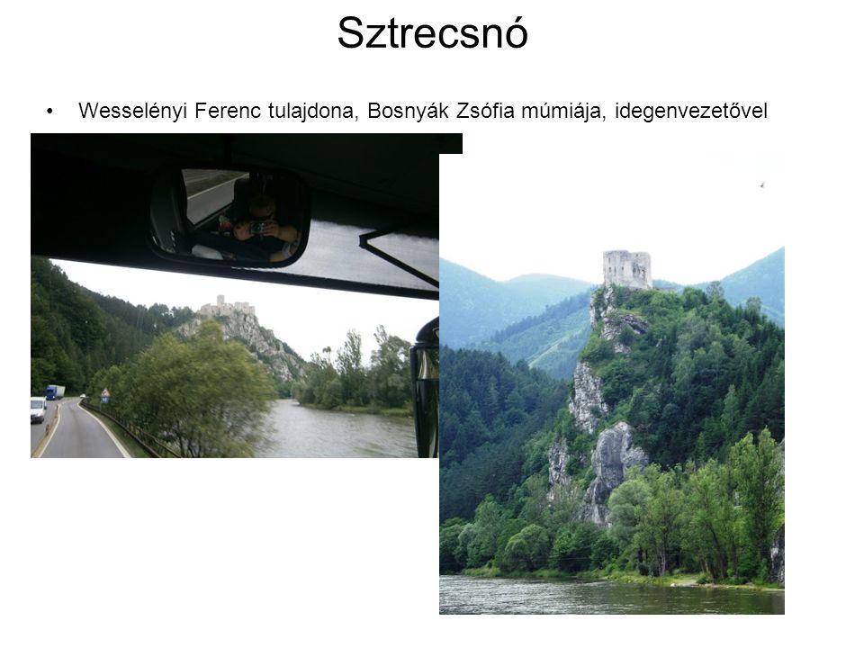 Sztrecsnó Wesselényi Ferenc tulajdona, Bosnyák Zsófia múmiája, idegenvezetővel