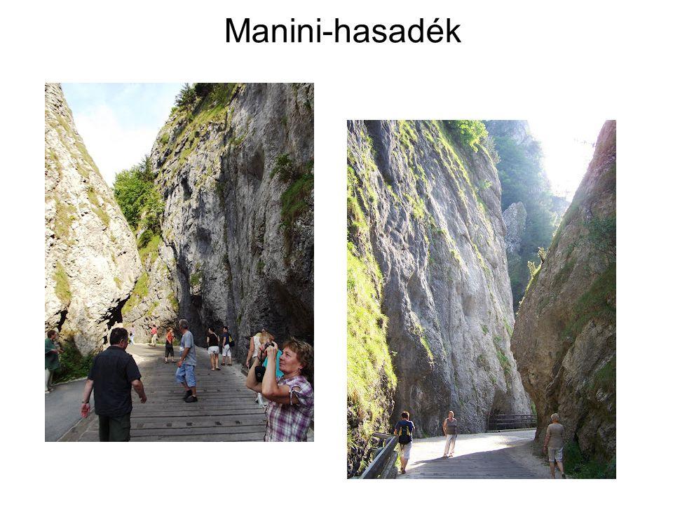 Manini-hasadék