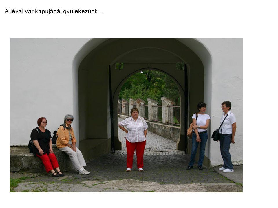 Zsolna – Budatin vára A Kiszuca folyó partján fekvő vizivár a Szunyogh-család mondáját dolgozta föl Arany: Katalin c.