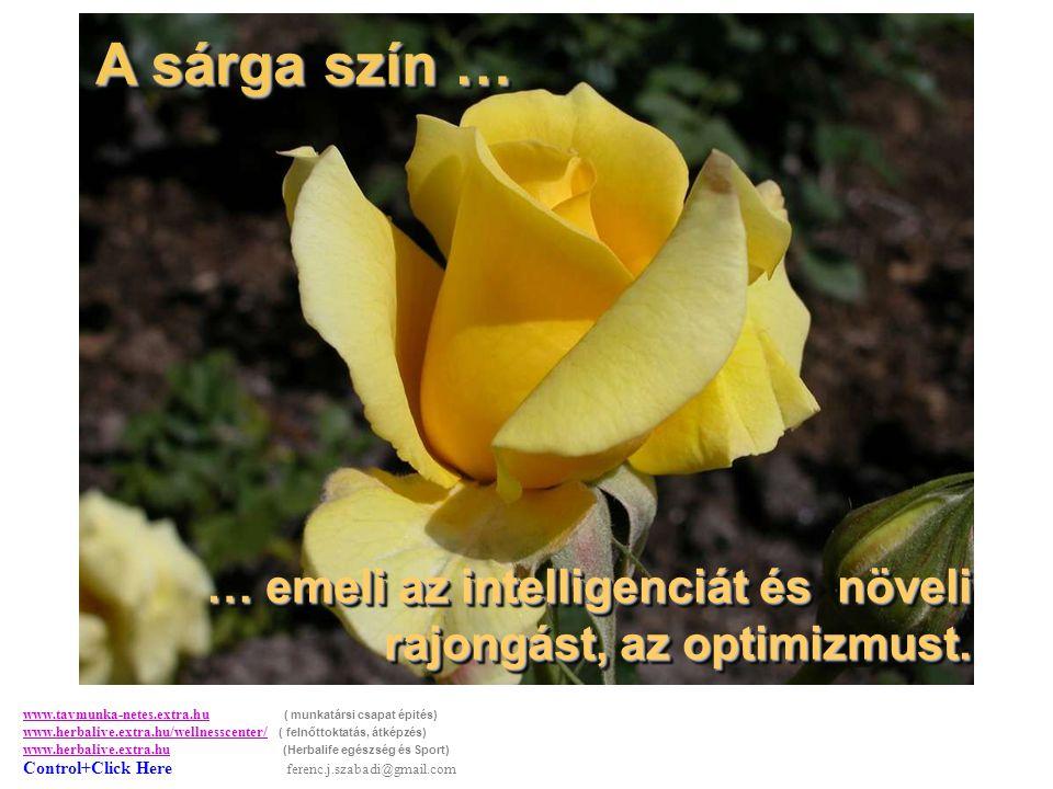 A sárga szín … A sárga szín … … emeli az intelligenciát és növeli rajongást, az optimizmust.
