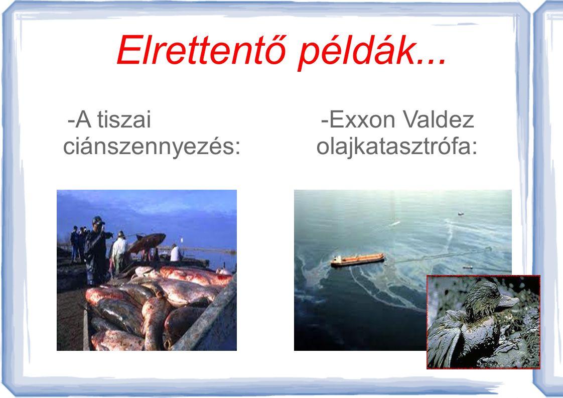 A vízszennyezés Az emberek nem veszik észre, hogy mi minddel szennyezik a környezetüket, s ezáltal a vizet is.