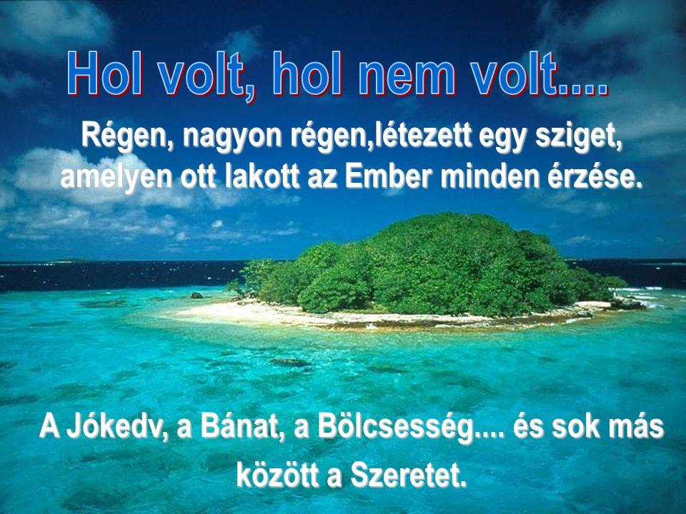 Régen, nagyon régen,létezett egy sziget, amelyen ott lakott az Ember minden érzése. A Jókedv, a Bánat, a Bölcsesség.... és sok más között a Szeretet.