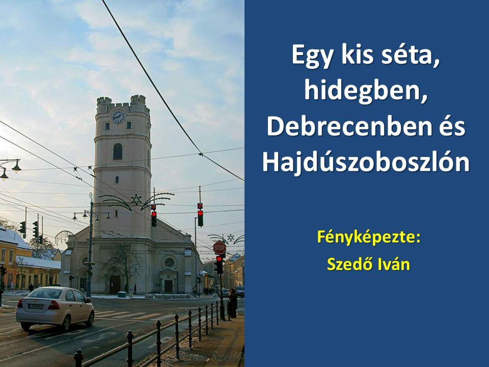 2010.12.19.Debrecen - Hajduszoboszló (- 4 C)11