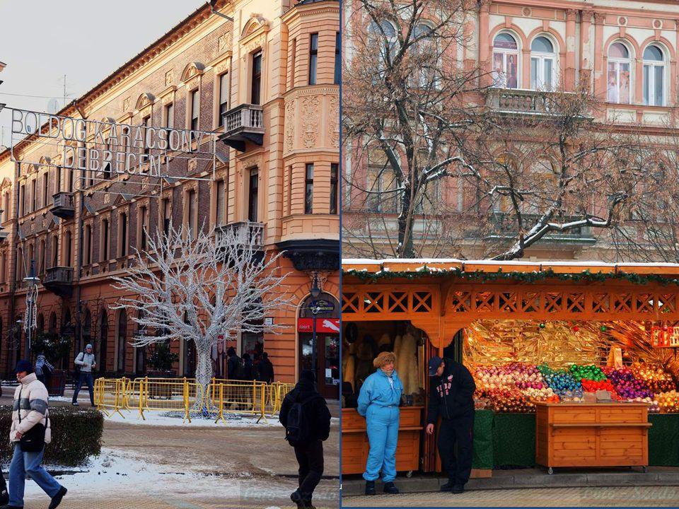 2010.12.19.Debrecen - Hajduszoboszló (- 4 C)7