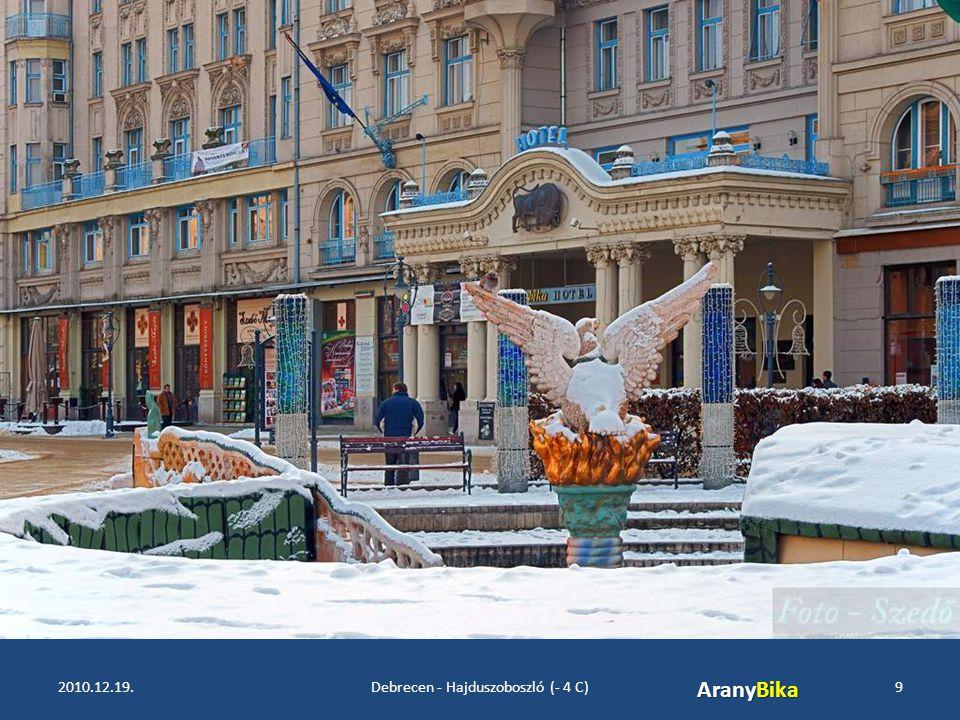 2010.12.19.Debrecen - Hajduszoboszló (- 4 C)9 AranyBika