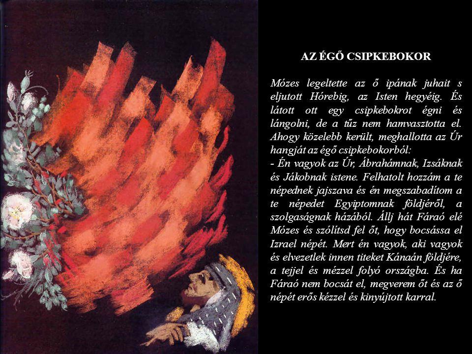AZ ÉGŐ CSIPKEBOKOR Mózes legeltette az ő ipának juhait s eljutott Hórebig, az Isten hegyéig. És látott ott egy csipkebokrot égni és lángolni, de a tűz