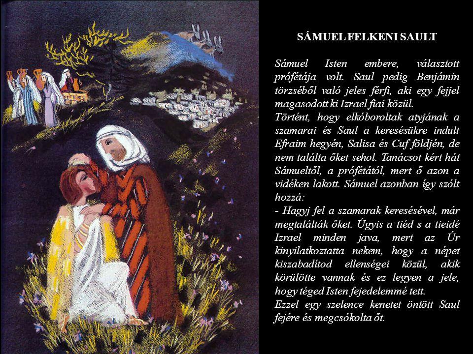SÁMUEL FELKENI SAULT Sámuel Isten embere, választott prófétája volt. Saul pedig Benjámin törzséből való jeles férfi, aki egy fejjel magasodott ki Izra