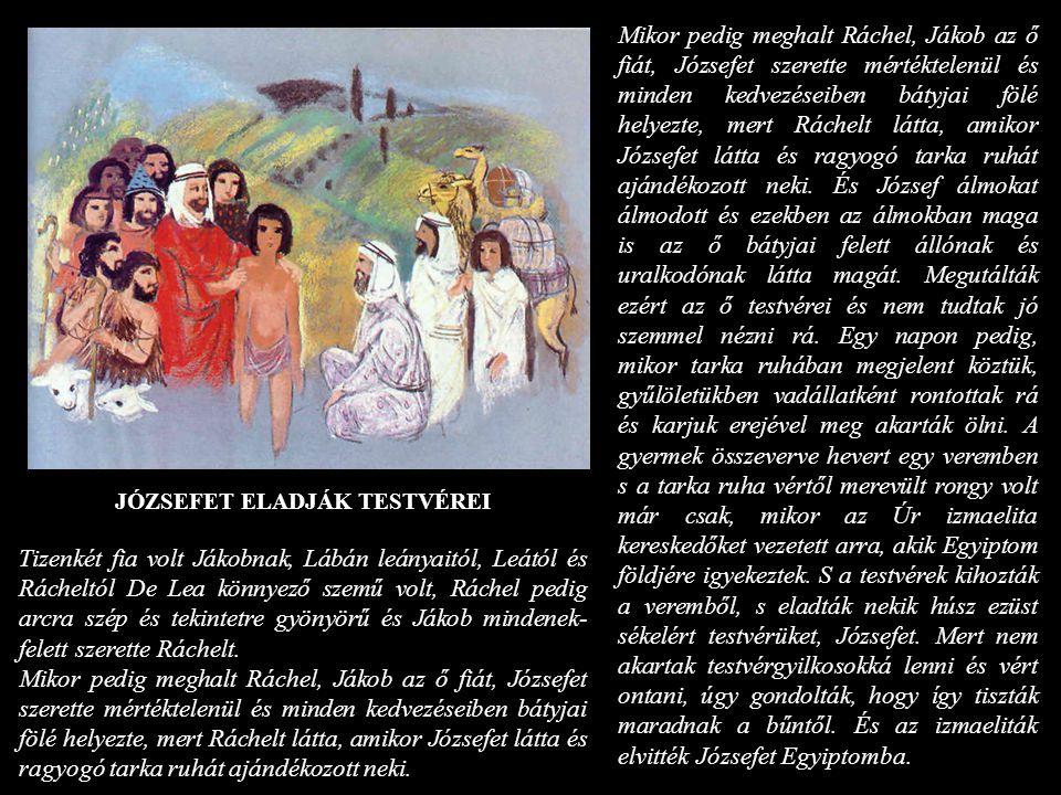 JÓZSEFET ELADJÁK TESTVÉREI Tizenkét fia volt Jákobnak, Lábán leányaitól, Leától és Rácheltól De Lea könnyező szemű volt, Ráchel pedig arcra szép és te