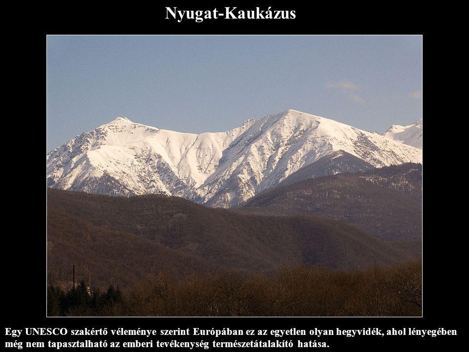 Nyugat-Kaukázus Egy UNESCO szakértő véleménye szerint Európában ez az egyetlen olyan hegyvidék, ahol lényegében még nem tapasztalható az emberi tevékenység természetátalakító hatása.