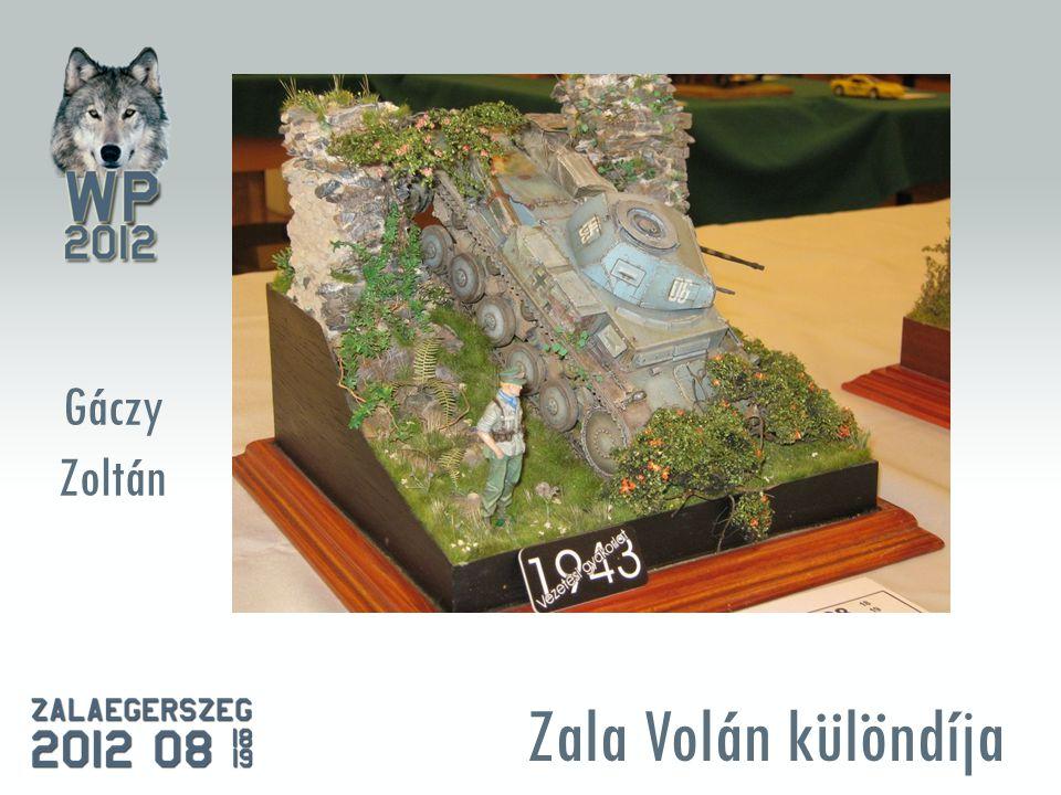 Zala Volán különdíja Gáczy Zoltán