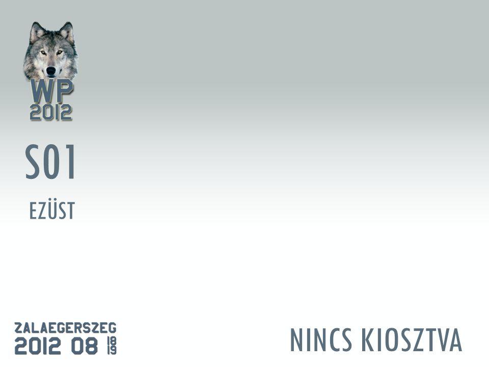 NINCS KIOSZTVA S01 EZÜST