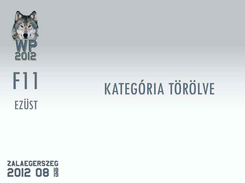 KATEGÓRIA TÖRÖLVE F11 EZÜST