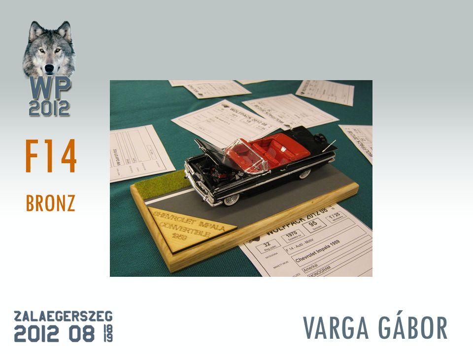 VARGA GÁBOR F14 BRONZ