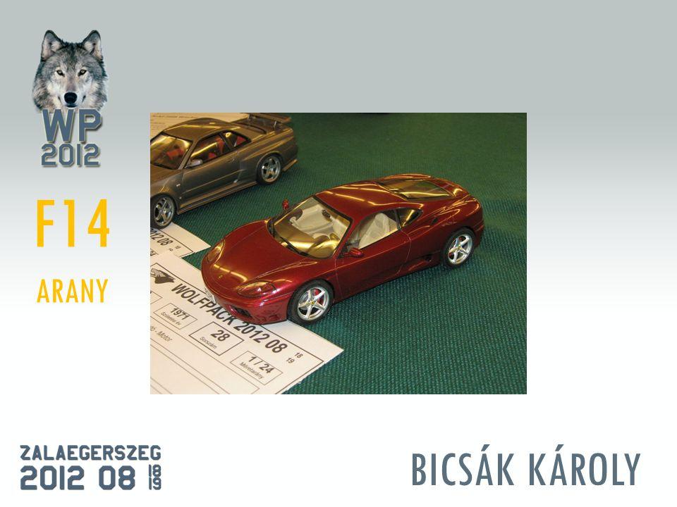 BICSÁK KÁROLY F14 ARANY