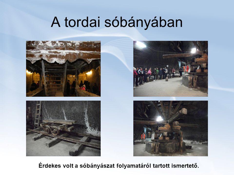A tordai sóbányában Érdekes volt a sóbányászat folyamatáról tartott ismertető.
